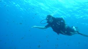 Plongée sous-marine-Le Marin-Baptême de Plongée au Marin, Martinique-5