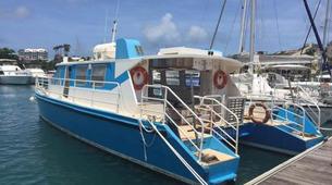 Plongée sous-marine-Réserve Cousteau-Stage de Plongée FFESSM dans la Réserve Cousteau en Guadeloupe-4