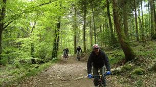 Mountain bike-Annecy-Downhill Mountain Biking in Semnoz, Annecy-2