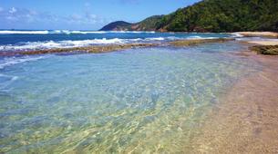 Surf-La Trinité-Cours particuliers de surf sur la Presqu'île de la Caravelle, Martinique-5