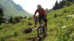 Mountain bike-Annecy-Downhill Mountain Biking in Semnoz, Annecy-3
