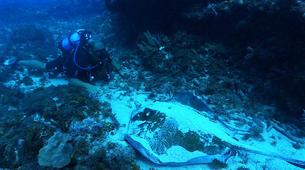 Plongée sous-marine-Saint-François-Stage de Plongée Open Water SSI à Saint-François, Guadeloupe-1