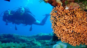 Scuba Diving-Corfu-Try Scuba Diving in Corfu-4