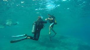 Plongée sous-marine-L'Île-Rousse-Baptême de plongée à Ile Rousse, Corse-4