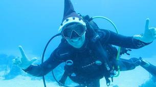 Plongée sous-marine-Saint-François-Bi-Plongées Exploration à Saint-François, Guadeloupe-5