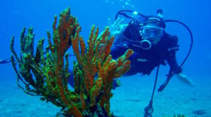 Scuba Diving-Corfu-Try Scuba Diving in Corfu-2
