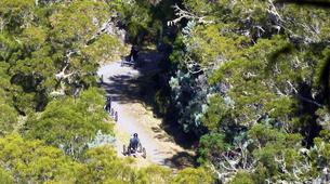 VTT-La Réunion-Excursions Quadbike à Assistance Electrique sur l'île de La Réunion-11