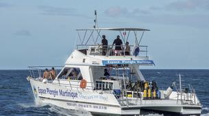 Scuba Diving-Les Trois-Îlets-First dive in Martinique-2