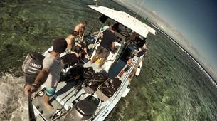 Apnée-Baie de Saint-Leu-Excursions Plongée en Apnée sur les Récifs de l'île de La Réunion-6