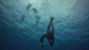 Apnée-Baie de Saint-Leu-Excursions Plongée en Apnée sur les Récifs de l'île de La Réunion-4