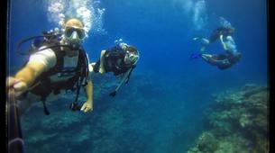 Plongée sous-marine-Baie de Saint-Leu-Plongées Exploration Guidées dans la Baie de Saint Leu, La Réunion-3
