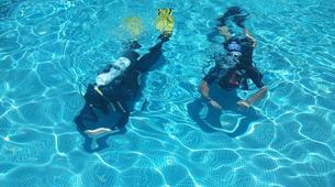Scuba Diving-Madeira-Scuba diving PADI courses in Machico, Madeira-4