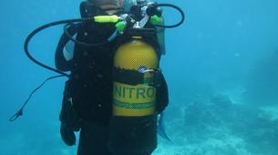 Plongée sous-marine-Port-Louis, Grande-Terre-Formation SSI Open Water Diver à Port-Louis, Guadeloupe-7