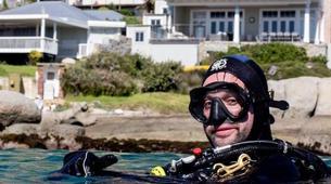 Tauchen-Cape Town-Private Open Water scuba diving course in Cape Town-2