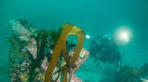 Tauchen-Cape Town-Private Open Water scuba diving course in Cape Town-5