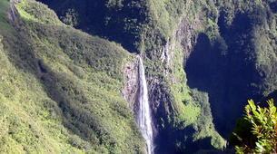 Randonnée / Trekking-Cirque de Salazie, Hell-Bourg-Randonnée dans la Forêt de Bélouve, La Réunion-6