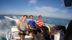 Shark Diving-Playa del Carmen-Whale shark snorkelling excursion in Playa del Carmen-2
