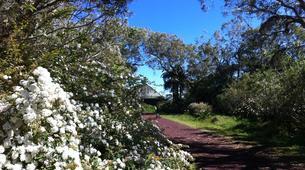 Randonnée / Trekking-Maïdo, Saint-Paul-Trek de 5J/4N dans le Cirque de Mafate à La Réunion-3
