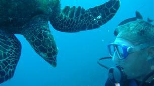 Plongée sous-marine-Moorea-Baptême de Plongée Moorea-6