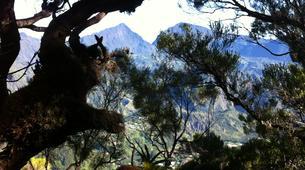 Randonnée / Trekking-Maïdo, Saint-Paul-Trek de 5J/4N dans le Cirque de Mafate à La Réunion-9