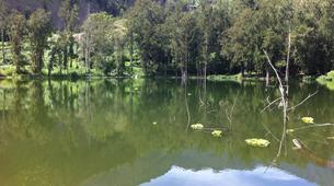 Randonnée / Trekking-Maïdo, Saint-Paul-Randonnée dans le Cirque de Mafate à La Réunion-5