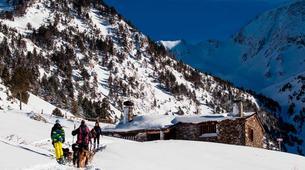 Dog sledding-Andorra-Mushing excursion in Port d' Envalira, Andorra-3