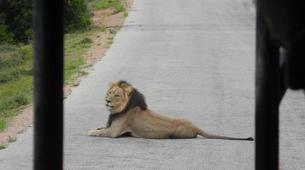 Safari-Le Cap-5D/4N Garden Route and Addo tour from Cape Town-5