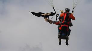 Paragliding-Morzine, Portes du Soleil-Tandem paragliding flight in Morzine - Avoriaz-10