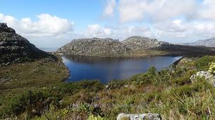 Hiking / Trekking-Cape Town-Hiking excursion up Kasteelspoort in Cape Town-5