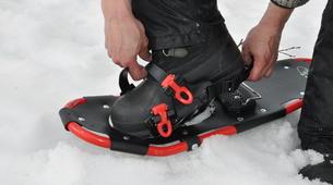 Snowshoeing-Tromsø-Arctic snowshoeing excursion in Tromsø-5