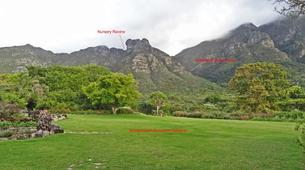 Hiking / Trekking-Cape Town-Hiking excursion up Skeleton Gorge in Cape Town-6