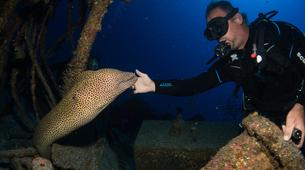Plongée sous-marine-Lagon de Saint-Gilles-Plongée Exploration Guidée à Saint-Gilles les Bains-1