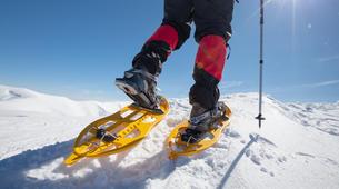 Snowshoeing-Tromsø-Arctic snowshoeing excursion in Tromsø-3