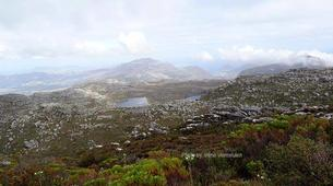 Hiking / Trekking-Cape Town-Hiking excursion up Kasteelspoort in Cape Town-8