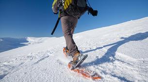 Snowshoeing-Tromsø-Arctic snowshoeing excursion in Tromsø-1