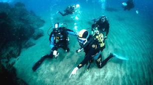 Plongée sous-marine-Puerto del Carmen, Lanzarote-Baptême de Plongée à Playa Chica, Puerto del Carmen-1