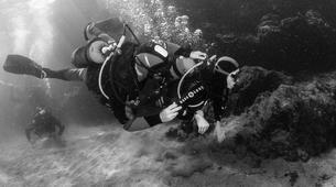 Plongée sous-marine-Puerto del Carmen, Lanzarote-Baptême de Plongée à Playa Chica, Puerto del Carmen-2