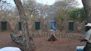 Safari-Victoria Falls-Chobe safari trips in Victoria Falls-5
