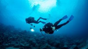 Plongée sous-marine-Puerto del Carmen, Lanzarote-Baptême de Plongée à Playa Chica, Puerto del Carmen-5