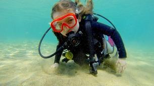Plongée sous-marine-Puerto del Carmen, Lanzarote-Baptême de Plongée à Playa Chica, Puerto del Carmen-4