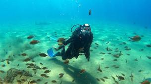 Plongée sous-marine-Puerto del Carmen, Lanzarote-Baptême de Plongée à Playa Chica, Puerto del Carmen-6