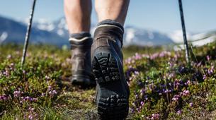 Hiking / Trekking-La Molina-Trekking on Tosa d'Alp in the Spanish Catalan Pyrenees-6