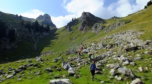 Hiking / Trekking-Le Grand-Bornand, Massif des Aravis-Hiking excursions and fauna observation in Le Grand-Bornand-9
