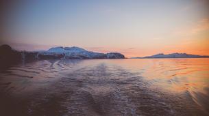 Sailing-Tromsø-Midnight Sun sailing in Tromsø-3
