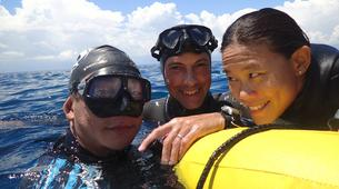 Freediving-Cebu-Discover freediving at Moalboal, Philippines-6