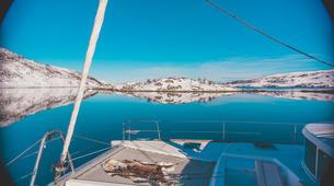 Sailing-Tromsø-Arctic fjord sailing excursion in Tromsø-5