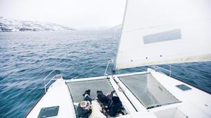 Sailing-Tromsø-Midnight Sun sailing in Tromsø-4