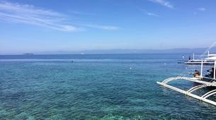Freediving-Cebu-Discover freediving at Moalboal, Philippines-5