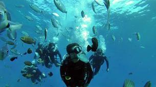 Scuba Diving-Santorini-Discover Scuba Diving in Santorini-1
