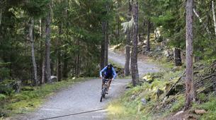VTT-Chamonix Mont-Blanc-Randonnée VTT à Chamonix-2